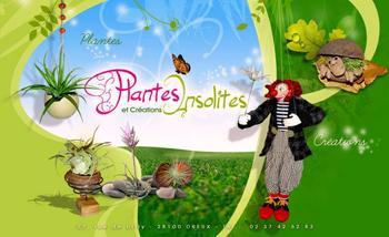 Plantes insolites